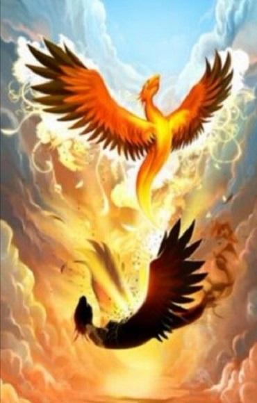 La résurrection du Phoenix, une initiation spirituelle www.energyclaire.com